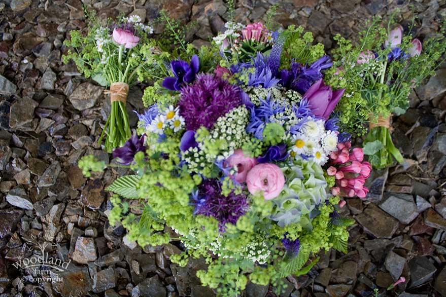 bluegreen flowers
