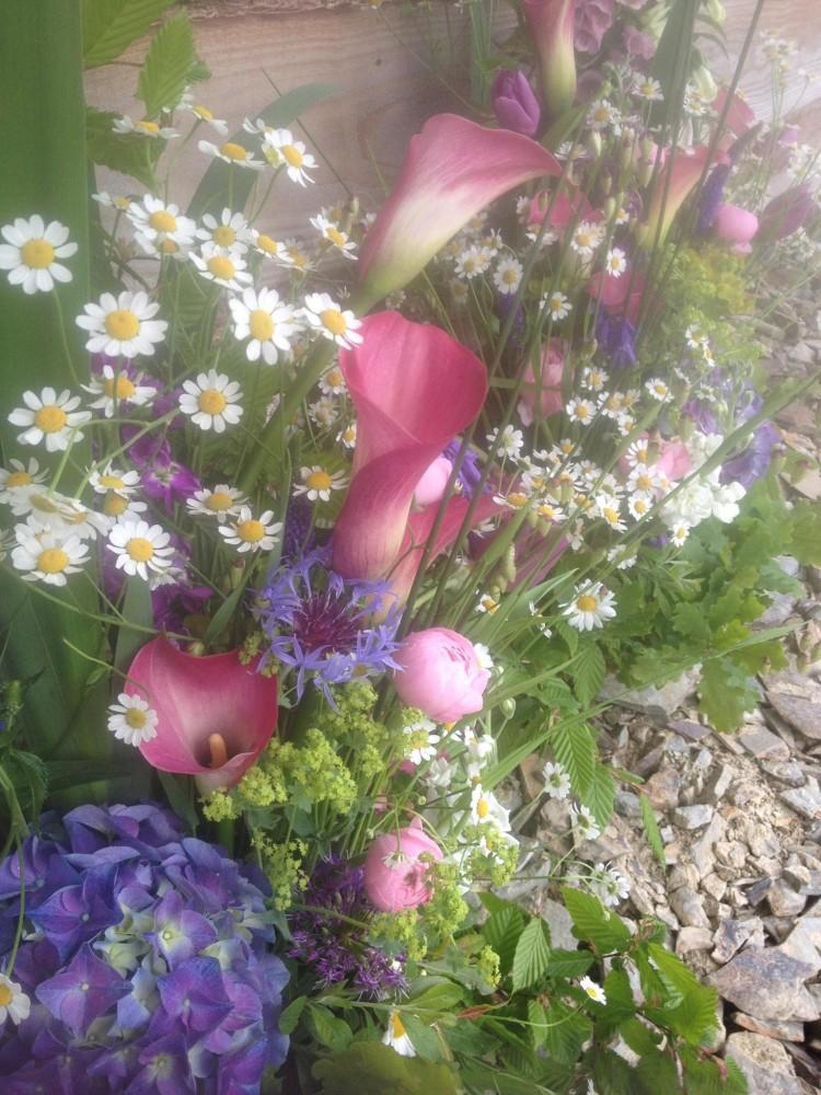 welsh grown flowers